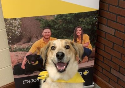 Puppy Training Tulsa 1