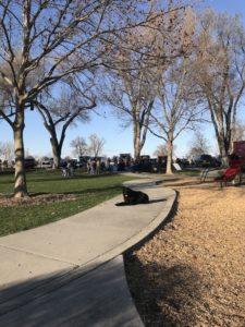 Boise Dog Training IMG 8275