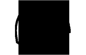 Icon Initial Fee